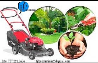Jardinería, mantenimiento de áreas verdes, lavado a presión y mas