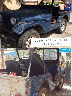 SE VENDE JEEP WILLY 1965