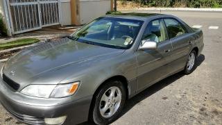 Lexus ES300 1999 Gris